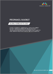 Propanol Market by Type (N-Propanol, Isopropanol), Application (Direct Solvent, Chemical Intermediate, Pharmaceutical, Household & Personal Care), and Region (North America, APAC, Europe, Middle East & Africa, South America) - Global Forecast to 2023