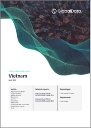 Vietnam Power Market Outlook to 2030, Update 2019 - Market Trends, Regulations, and Competitive Landscape
