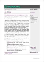 AI Chips - Thematic Research