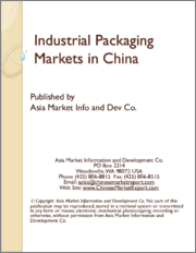 Industrial Packaging Markets in China
