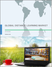 Distance Learning Market by Type and Geography - Global Forecast and Analysis 2019-2023