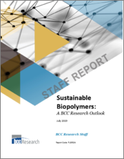 Sustainable Biopolymers: A BCC Research Outlook