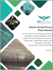 Global Virtual Power Plant Market: Focus on Source, Technology (Distributed Generation, Demand Response, Mixed Asset), End User (Industrial, Commercial, Residential), Stakeholder Analysis, and Regulatory Landscape - Analysis and Forecast, 2019-2024