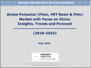 Global Polyester (Fiber, PET Resin & Film) Market with Focus on China: Insights, Trends & Forecast (2019-2023)