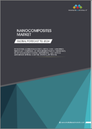 Nanocomposites Market by Type (Carbon Nanotubes, Nanoclay Metal Oxide, Nanofiber, Graphene), Resin Type, Application (Packaging, Automotive, Electrical & Semiconductors, Coatings, Aerospace & Defense, Energy), Region - Global Forecast to 2024