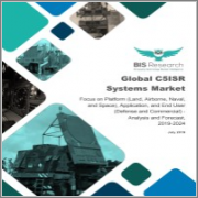 Global C5ISR Systems Market: Focus on Platform (Land, Airborne, Naval, and Space), Application, and End User (Defense and Commercial) - Analysis and Forecast, 2019-2024