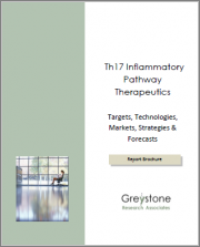 Th17 Inflammatory Pathway Therapeutics