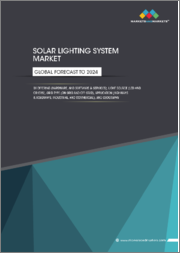 Solar Lighting System Market by Offering (Hardware and Software & Services), Light Source (LED and Others), Grid Type (On Grid and Off Grid), Application (Highways & Roadways, Industrial, and Commercial), and Geography - Global Forecast to 2024