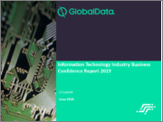 Information Technology Industry Business Confidence Report 2019