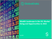 Wealth Landscape in the US: Market Sizing and Opportunities to 2022
