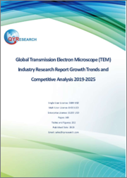 Global Transmission Electron Microscope (TEM) Industry Research Report Growth Trends and Competitive Analysis 2019-2025