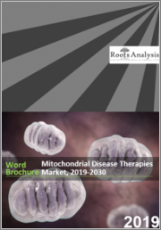 Mitochondrial Disease Therapies Market, 2019-2030