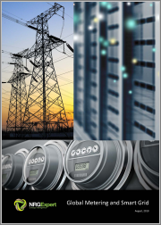 The Global Metering and Smart Grid Market - Report and Database