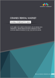 Cranes Rental Market by Type (Mobile, Fixed), Weight Lifting Capacity (Low, Low-Medium, Heavy, Extreme Heavy), End-Use Industry (Building & Construction, Marine & Offshore, Mining & Excavation, Oil & Gas, Transportation), Region: Global Forecast to 2024