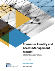 Consumer Identity and Access Management Market: Global Considerations