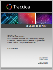 RISC-V Processors - RISC-V IP and Software and Tools for AI, Storage, Computer, Communications, and IoT Applications: Global Market Analysis and Forecasts