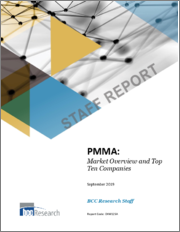 PMMA: Market Overview and Top Ten Companies
