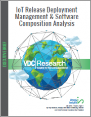IoT Release Deployment Management & Software Composition Analysis