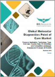 Global Molecular Diagnostics Point of Care Market: Focus on Application, Technology, Type, End User, Country Data (15 Countries), and Competitive Landscape - Analysis and Forecast, 2019-2029