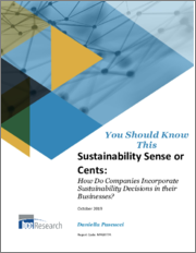 Sustainability Sense or Cents: How do Companies Incorporate Sustainability Decisions in their Businesses?