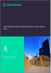 India Biopower Anlaysis: Market Outlook to 2030, Update 2019