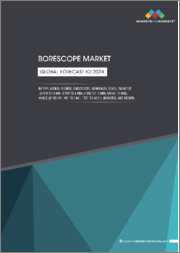 Borescope Market by Type (Video, Flexible, Endoscope, Semi-rigid, Rigid), Diameter (0 mm to 3 mm, 3 mm to 6 mm, 6 mm to 10 mm, Above 10 mm), Angle (0 to 90, 90 to 180, 180 to 360), Industry, and Region - Global Forecast to 2024
