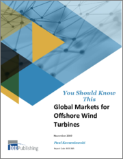 Global Markets for Offshore Wind Turbines