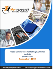 Global Commercial Satellite Imaging Market (2019-2025)