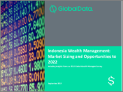 Indonesia Wealth Management: Market Sizing and Opportunities to 2022