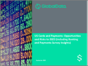 US Cards & Payments: Opportunities and Risks to 2023