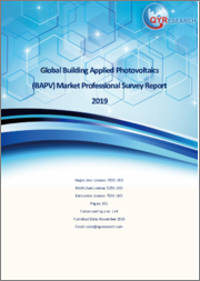 Global Building Applied Photovoltaics (BAPV) Market Professional Survey Report 2019