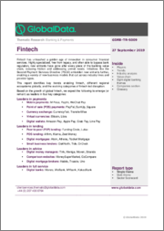 Fintech - Thematic Research