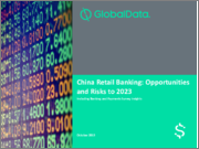 China Retail Banking: Opportunities and Risks to 2023