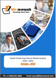 Global Private Cloud Server Market (2019-2025)