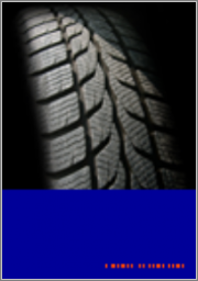 Sumitomo Rubber (SRI) PCLT Tire Market Share and Competitor Positioning Report