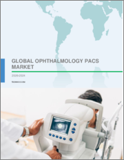 Ophthalmology PACS Market by Type and Geography - Forecast and Analysis 2020-2024
