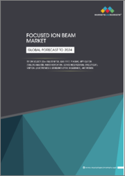 Focused Ion Beam Market by Ion Source (Ga+ Liquid Metal, Plasma), Application (Failure Analysis, Nanofabrication), Vertical (Electronics & Semiconductor, Industrial Science, Material Science, Bioscience), and Region - Global Forecast to 2024