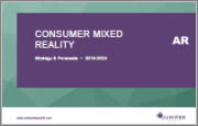 Consumer Mixed Reality: Emerging Opportunities, Vendor Strategies & Market Forecasts 2019-2024