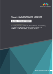 Small Hydropower Market by Capacity (Up to 1 MW, 1-10 MW), Type (Micro Hydropower, Mini Hydropower), Components (Electromechanical Equipment, Electric infrastructure, Civil Works), and Region - Global Forecast to 2024