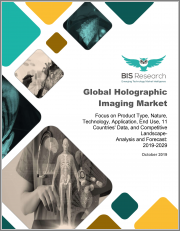 Global Holographic Imaging Market: Focus on Product Type, Nature, Technology, Application, End Use, 11 Countries' Data, and Competitive Landscape - Analysis and Forecast, 2019-2029