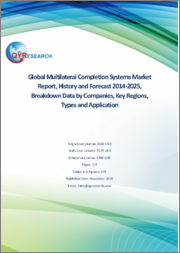 Global Multilateral Completion Systems Market Report, History and Forecast 2014-2025, Breakdown Data by Companies, Key Regions, Types and Application