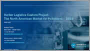 The North American Market for Palletizers - 2019