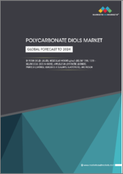 Polycarbonate Diols Market by form (Solid, Liquid), Molecular Weight (g/mol) (<1000, 1000 - Below 2000, 2000 & Above), Application (Synthetic Leathers, Paints & Coatings, Adhesives & Sealants, Elastomers), and Region - Global Forecast to 2024