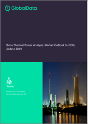China Thermal Power Analysis: Market Outlook to 2030, Update 2019