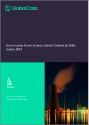 China Nuclear Power Analysis: Market Outlook to 2030, Update 2019