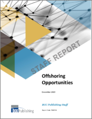 Offshoring Opportunities