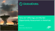 Telco IoT Offerings and Market Opportunity Assessment in Americas