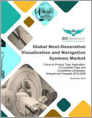 Global Next-Generation Visualization and Navigation Systems Market: Focus on Product Type, Application, 12 Countries' Data, and Competitive Landscape - Analysis and Forecast, 2019-2029
