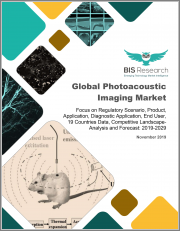 Global Photoacoustic Imaging Market: Focus on Regulatory Scenario, Product, Application, Diagnostic Application, End User, 19 Countries Data, Competitive Landscape - Analysis and Forecast, 2019-2029