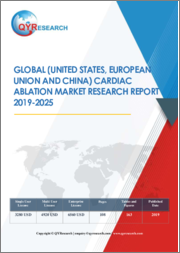Global (United States, European Union and China) Cardiac Ablation Market Research Report 2019-2025